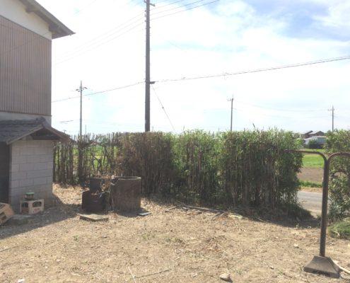 竹 伐採後 春日部市 業者 植木屋