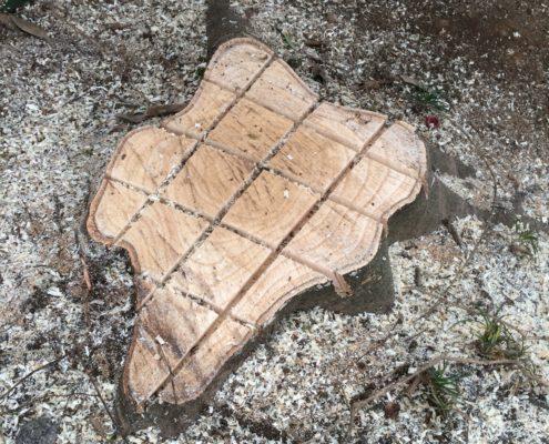 さいたま市岩槻区 伐採 根の処理 春日部市 業者 植木屋