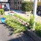 生垣 ボックスウッド 西洋ツゲ 植栽 植樹