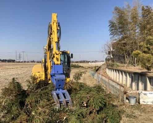 伐採 大量 高木 さいたま市 春日部市 植木屋