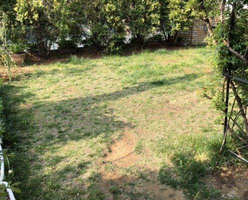 作業前 芝張り 雑草 西洋芝 さいたま市 春日部市