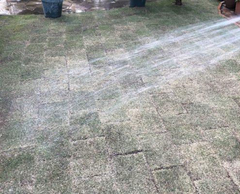 芝生 水やり 姫高麗芝 芝張り 春日部市 金子造園