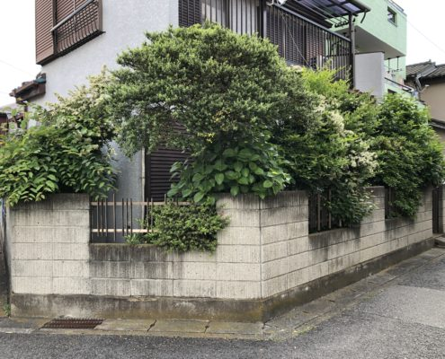 樹木伐採 庭木伐採 埼玉県春日部市 さいたま市 植木屋 伐採業者