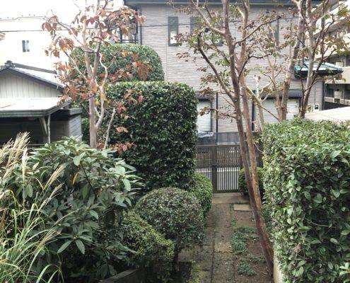 庭木 剪定 お手入れ 作業後 庭師 植木屋 さいたま市 浦和区